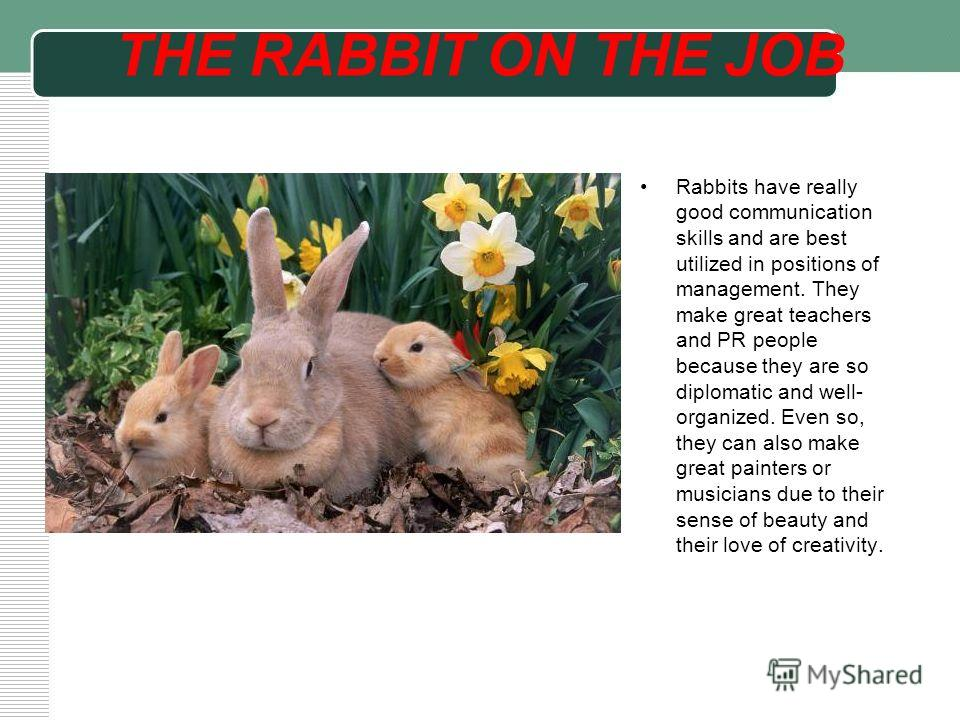 THE RABBIT ON THE JOB Rabbits have really good communication skills and are best utilized in positions of management. They make great teachers and PR people because they are so diplomatic and well- organized. Even so, they can also make great painter