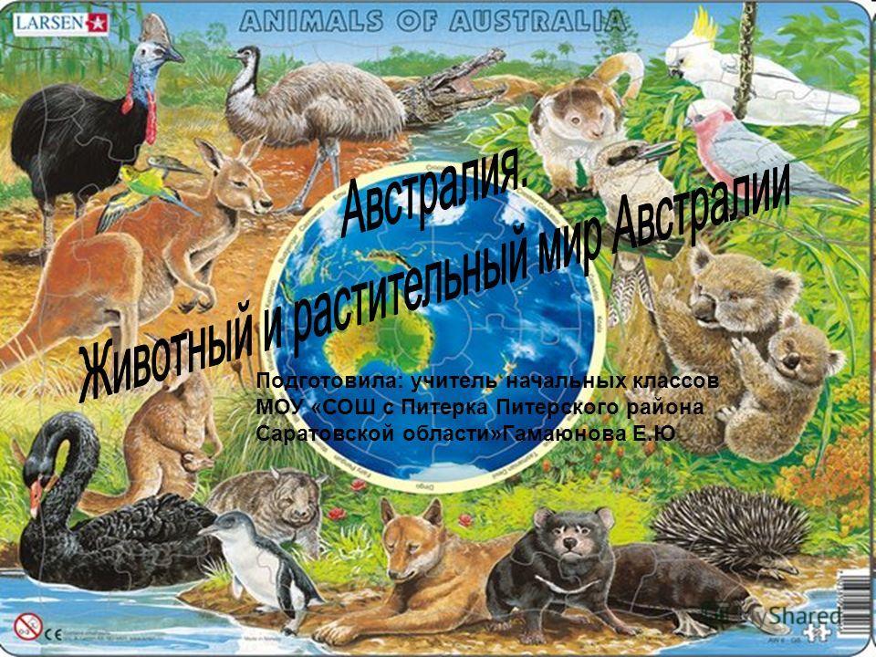 Газета колымские новости архив