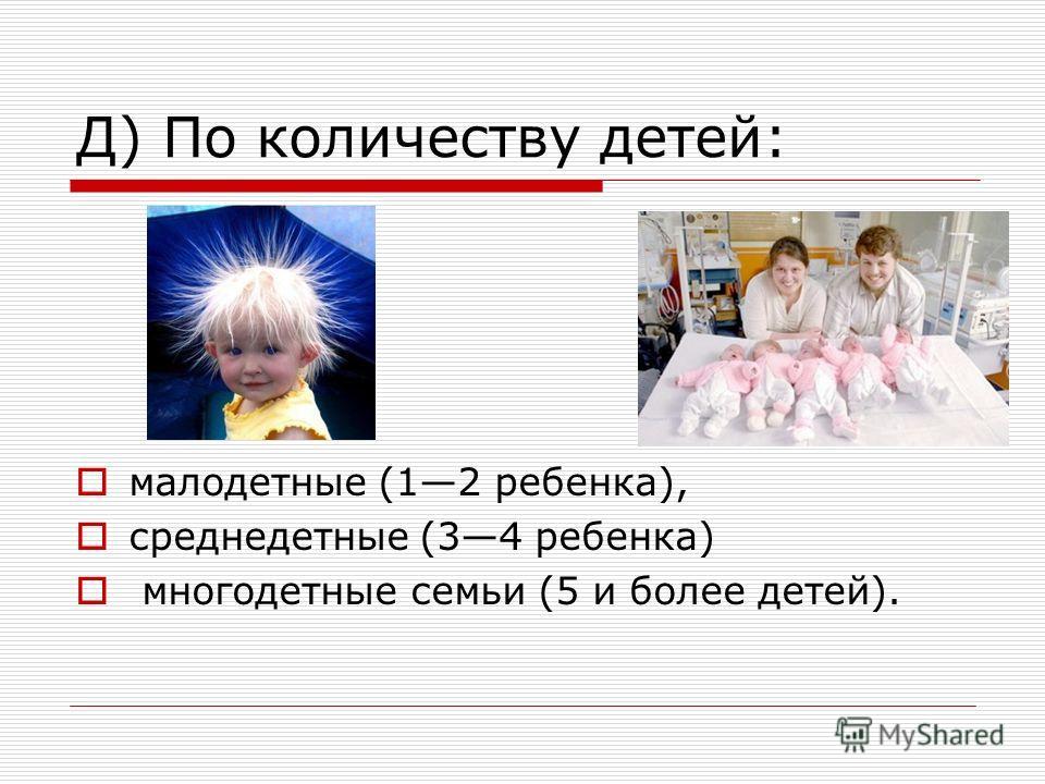 Д) По количеству детей: малодетные (12 ребенка), среднедетные (34 ребенка) многодетные семьи (5 и более детей).