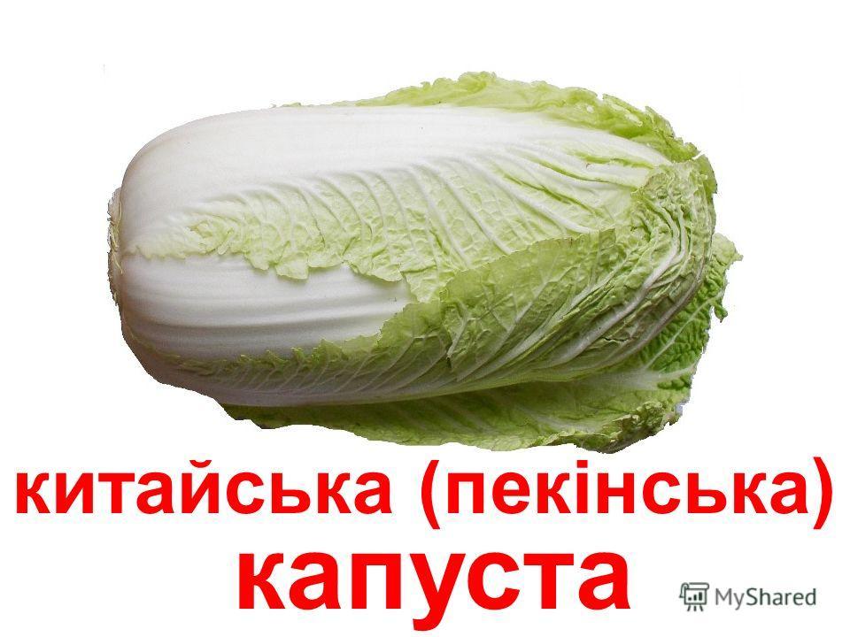 капуста брокколі