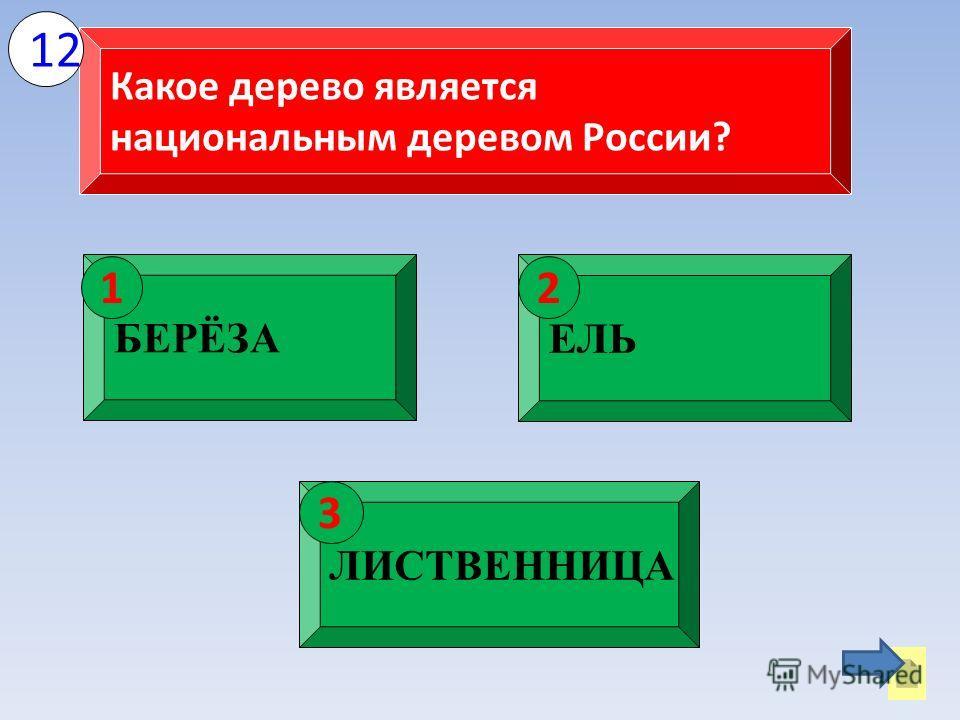 Какое дерево является национальным деревом России? БЕРЁЗА 1 ЕЛЬ 2 ЛИСТВЕННИЦА 3 12