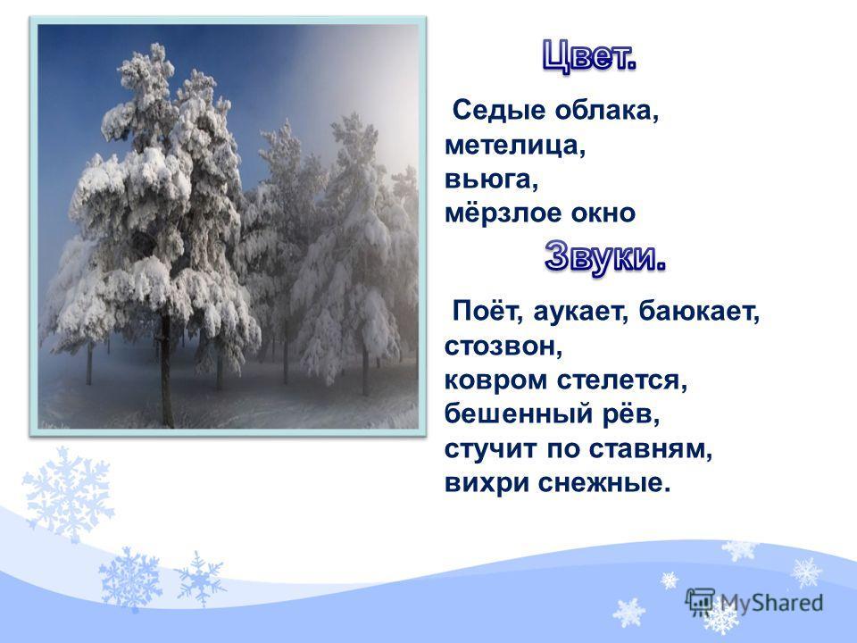 Седые облака, метелица, вьюга, мёрзлое окно Поёт, аукает, баюкает, стозвон, ковром стелется, бешенный рёв, стучит по ставням, вихри снежные.