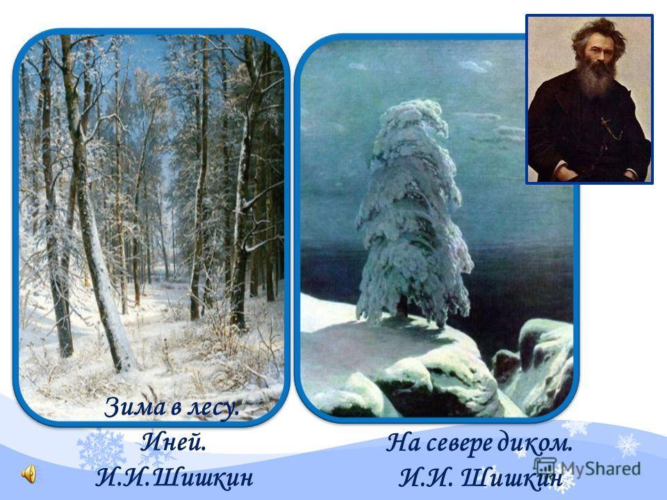 На севере диком. И.И. Шишкин Зима в лесу. Иней. И.И.Шишкин