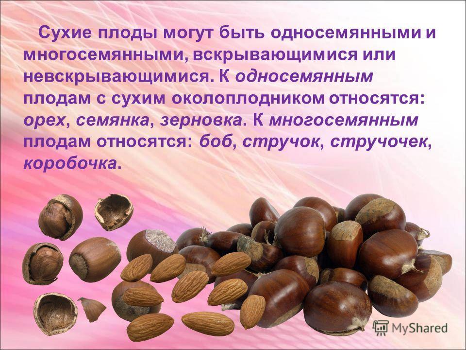 Сухие плоды могут быть односемянными и многосемянными, вскрывающимися или невскрывающимися. К односемянным плодам с сухим околоплодником относятся: орех, семянка, зерновка. К многосемянным плодам относятся: боб, стручок, стручочек, коробочка.