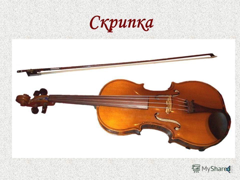 Город Струнных музыкальных инструментов
