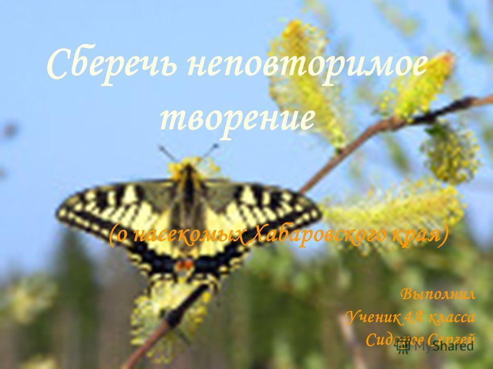 Сберечь неповторимое творение (о насекомых Хабаровского края) Выполнил Ученик 4А класса Сидоров Сергей