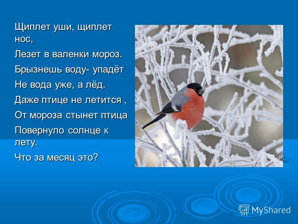 Щиплет уши, щиплет нос, Лезет в валенки мороз. Брызнешь воду- упадёт Не вода уже, а лёд. Даже птице не летится, От мороза стынет птица Повернуло солнце к лету. Что за месяц это?