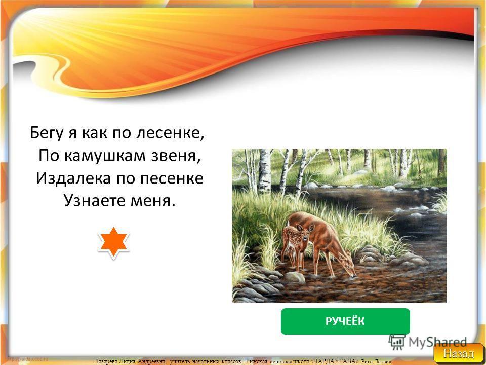 Лазарева Лидия Андреевна, учитель начальных классов, Рижская основная школа «ПАРДАУГАВА», Рига, Латвия МОРЕ Кругом вода, а пить нечего.