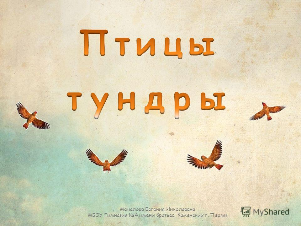 Мочалова Евгения Николаевна МБОУ Гимназия 4 имени братьев Каменских г. Перми