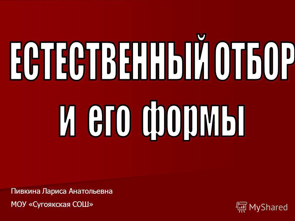 Пивкина Лариса Анатольевна МОУ «Сугоякская СОШ»