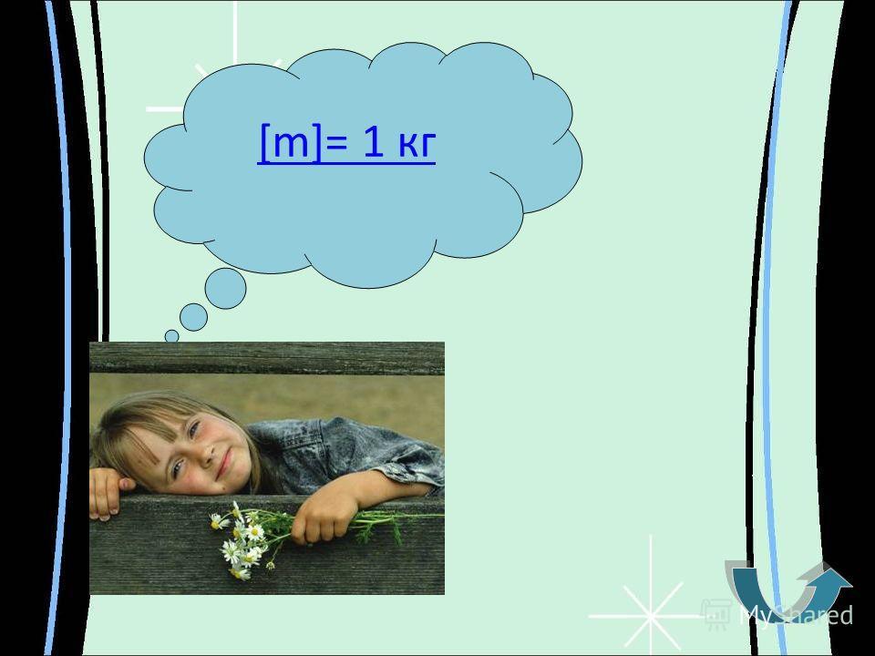 [m]= 1 кг