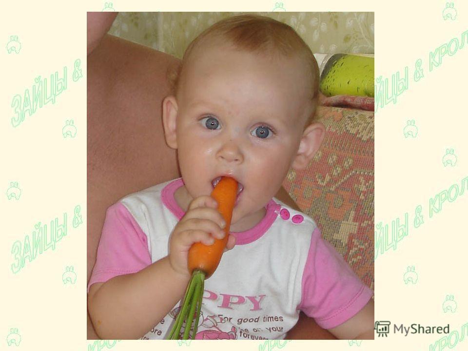 ГРЫЗЁТ морковку