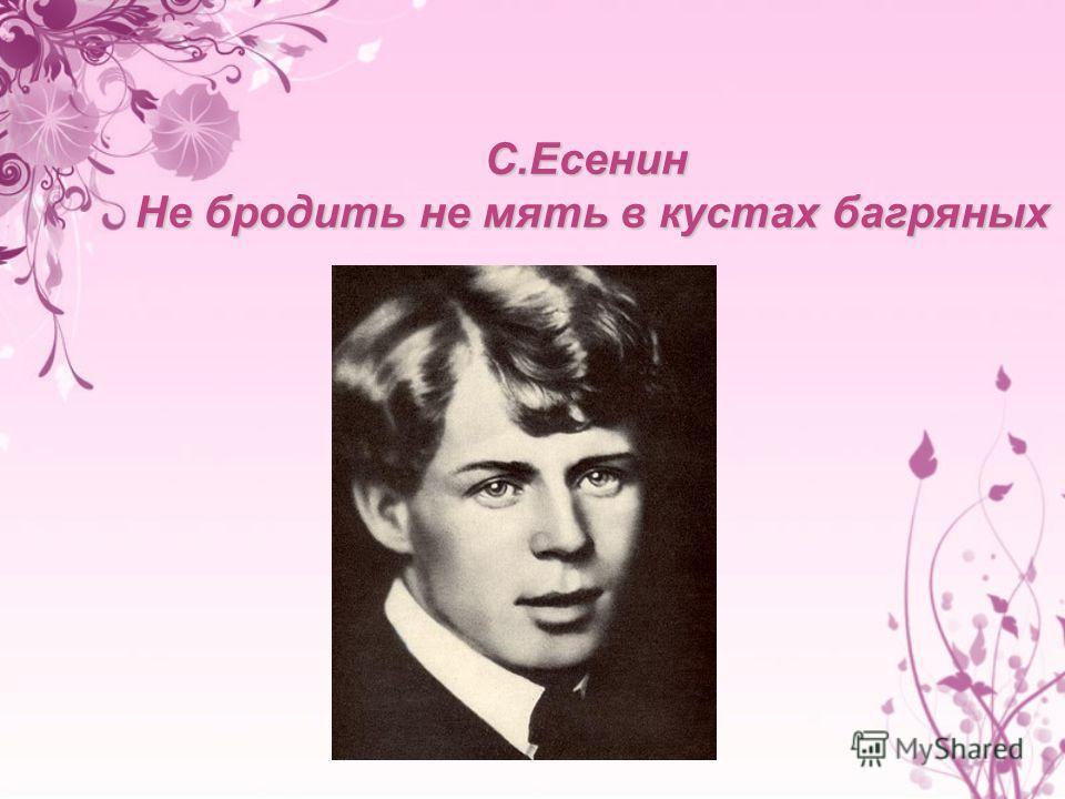 С.Есенин Не бродить не мять в кустах багряных