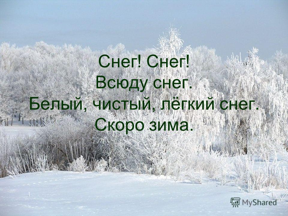Снег! Снег! Всюду снег. Белый, чистый, лёгкий снег. Скоро зима.