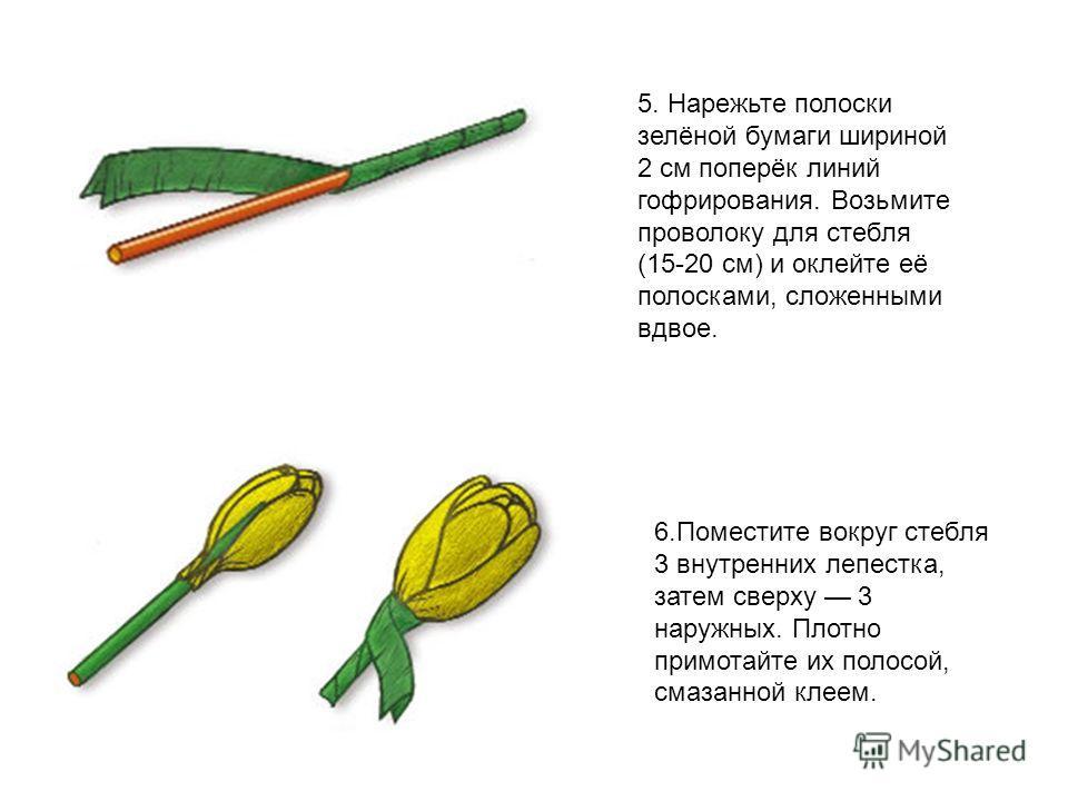 5. Нарежьте полоски зелёной бумаги шириной 2 см поперёк линий гофрирования. Возьмите проволоку для стебля (15-20 см) и оклейте её полосками, сложенными вдвое. 6. Поместите вокруг стебля 3 внутренних лепестка, затем сверху 3 наружных. Плотно примотайт