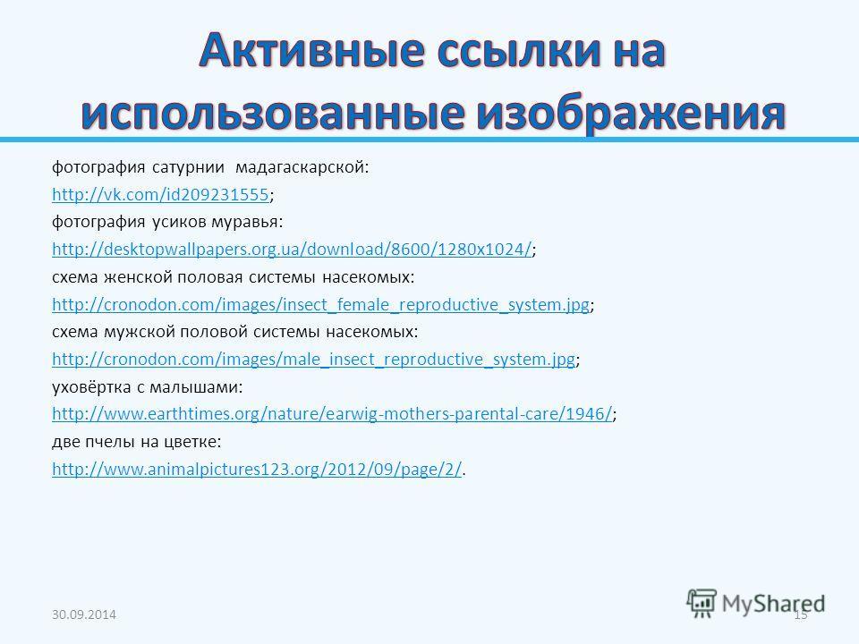 фотография сатурнии мадагаскарской: http://vk.com/id209231555http://vk.com/id209231555; фотография усиков муравья: http://desktopwallpapers.org.ua/download/8600/1280x1024/http://desktopwallpapers.org.ua/download/8600/1280x1024/; схема женской половая
