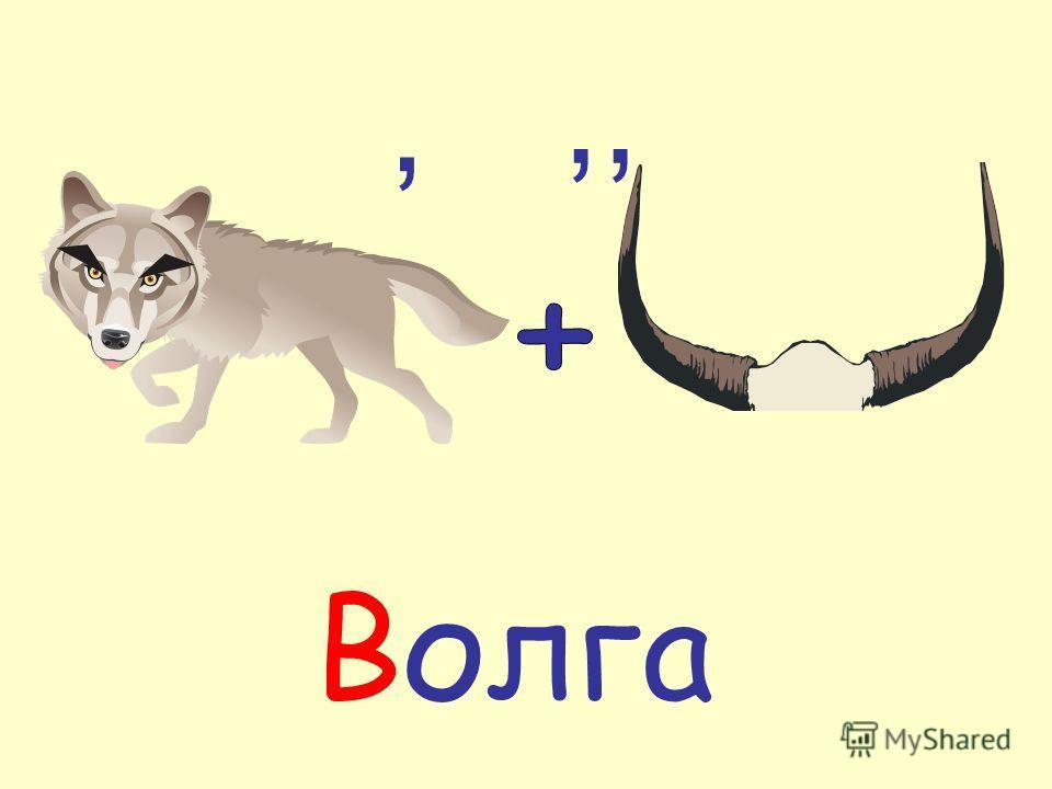 ,,, Волга