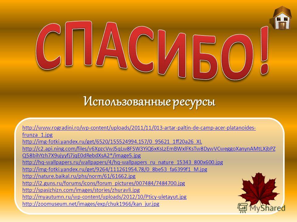 http://www.rogradini.ro/wp-content/uploads/2011/11/013-artar-paltin-de-camp-acer-platanoides- frunza_1. jpg http://img-fotki.yandex.ru/get/6520/155524994.157/0_95621_1ff20a26_XL http://c2.api.ning.com/files/v6XpzcVwJ5qLw8FSW3YiQ6xKsLzEmBWxlFKsTw8DywV