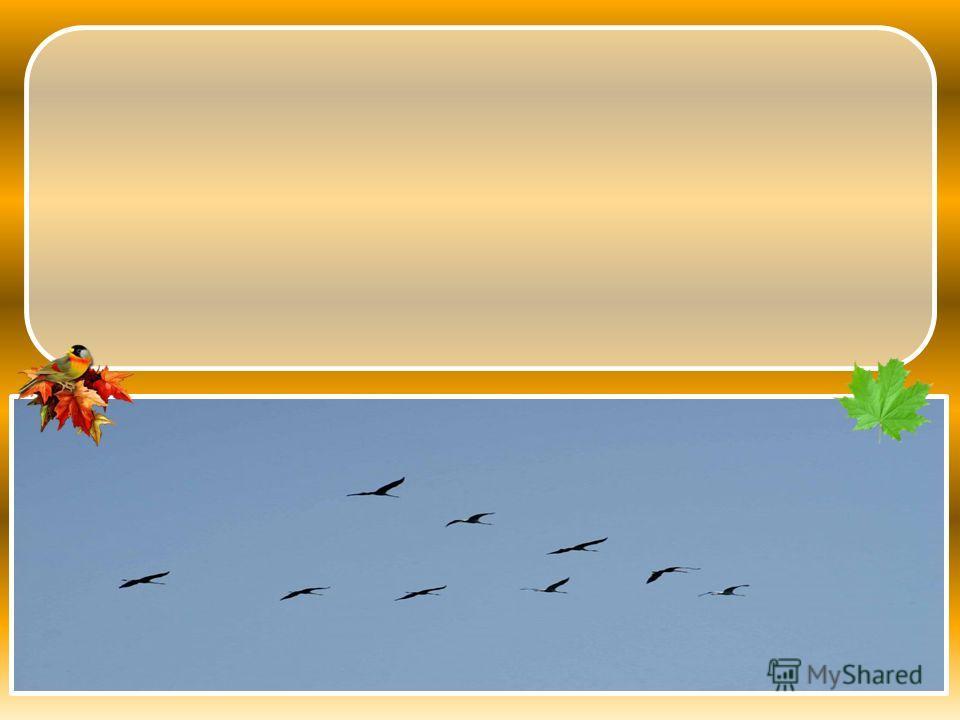 В ЖУРАВЛЕЙ ВЫСОКО ЛЕТЕЛ БОЛЬШОЙ НЕБЕ КОСЯК ЭТО Это высоко в небе летел большой косяк журавлей.
