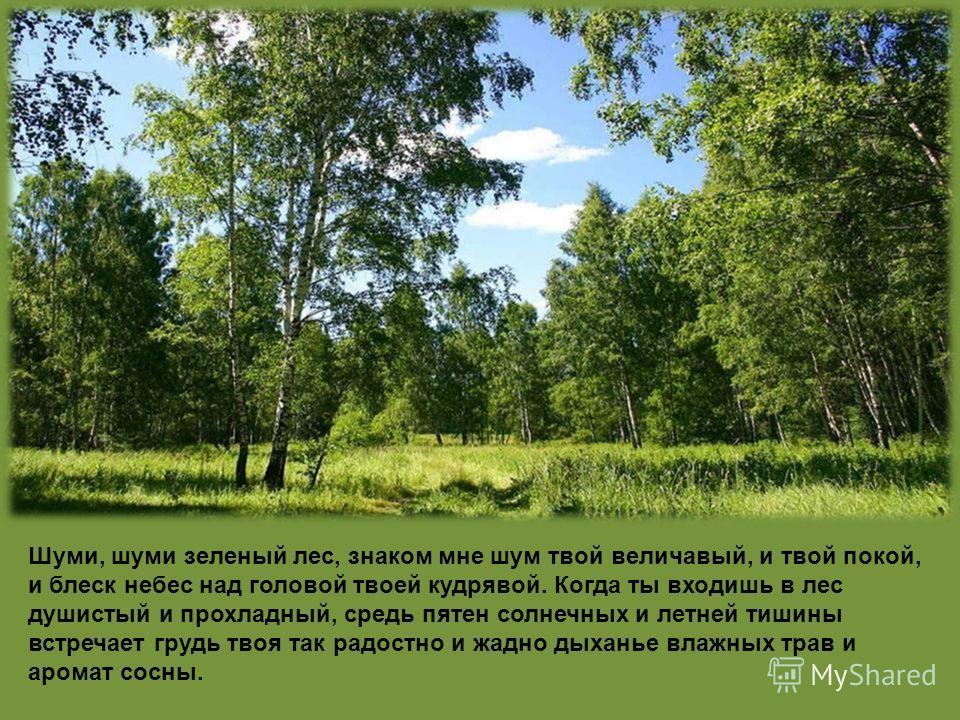 Шуми, шуми зеленый лес, знаком мне шум твой величавый, и твой покой, и блеск небес над головой твоей кудрявой. Когда ты входишь в лес душистый и прохладный, средь пятен солнечных и летней тишины встречает грудь твоя так радостно и жадно дыханье влажн