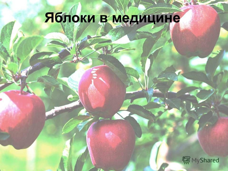 Яблоки в медицине