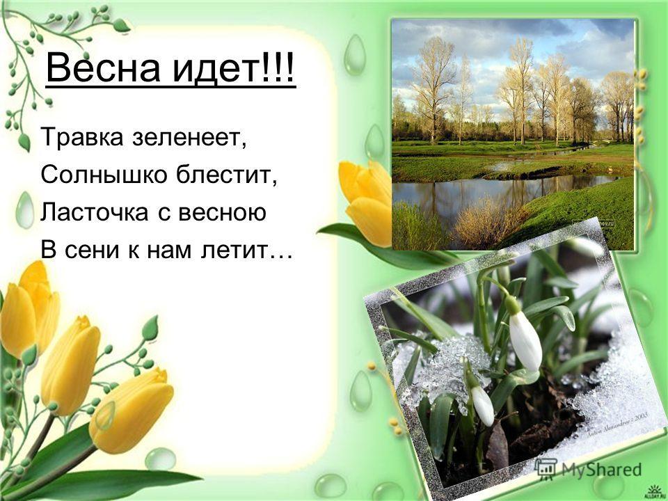 Весна идет!!! Травка зеленеет, Солнышко блестит, Ласточка с весною В сени к нам летит…