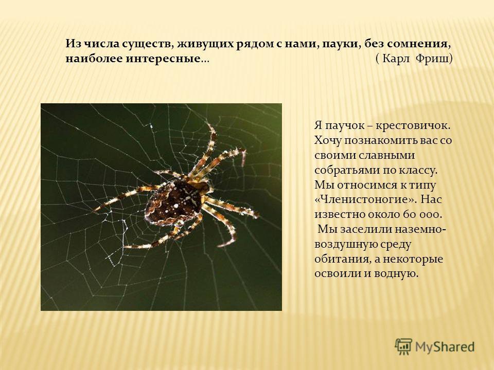 Из числа существ, живущих рядом с нами, пауки, без сомнения, наиболее интересные… ( Карл Фриш) Я паучок – крестовичок. Хочу познакомить вас со своими славными собратьями по классу. Мы относимся к типу «Членистоногие». Нас известно около 60 000. Мы за