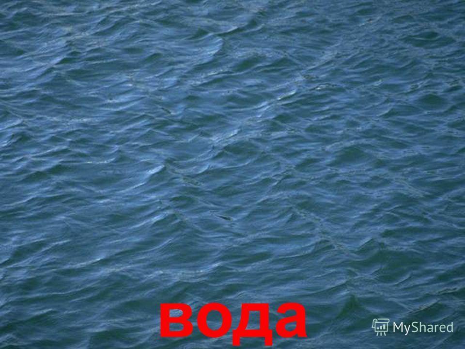 вода та водойми