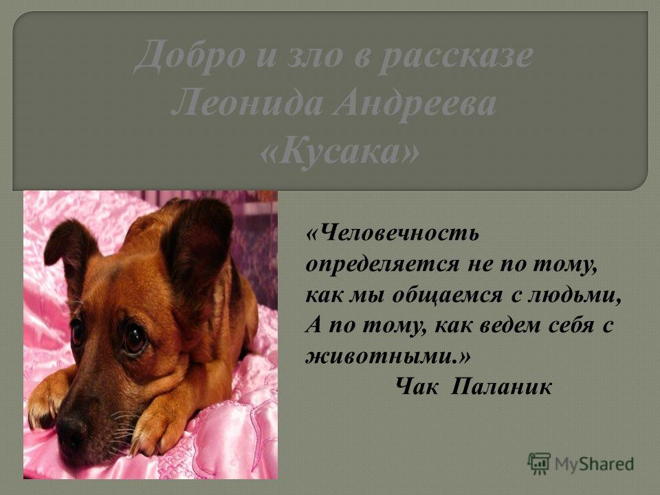 «Человечность определяется не по тому, как мы общаемся с людьми, А по тому, как ведем себя с животными.» Чак Паланик Добро и зло в рассказе Леонида Андреева «Кусака»
