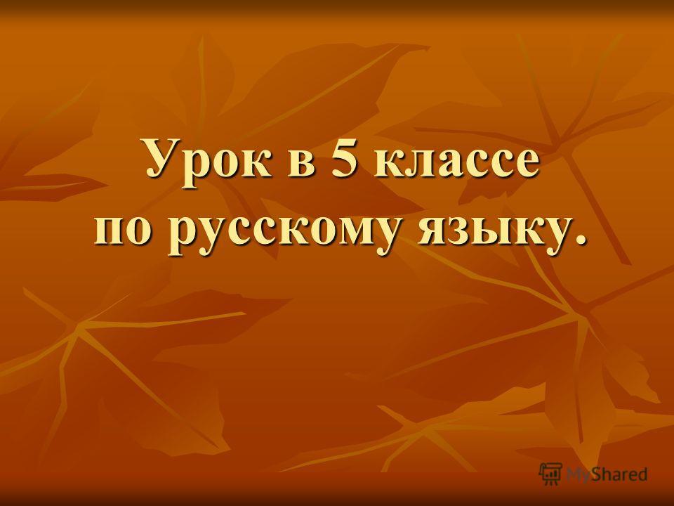 Урок в 5 классе по русскому языку.