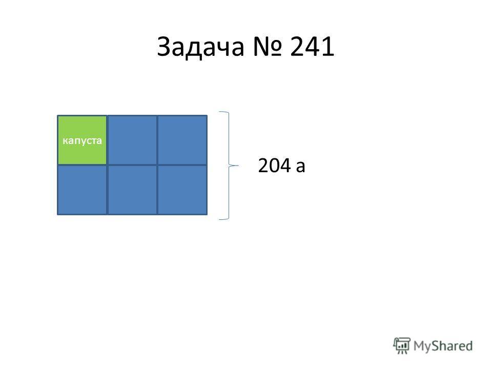 Задача 241 204 а капуста