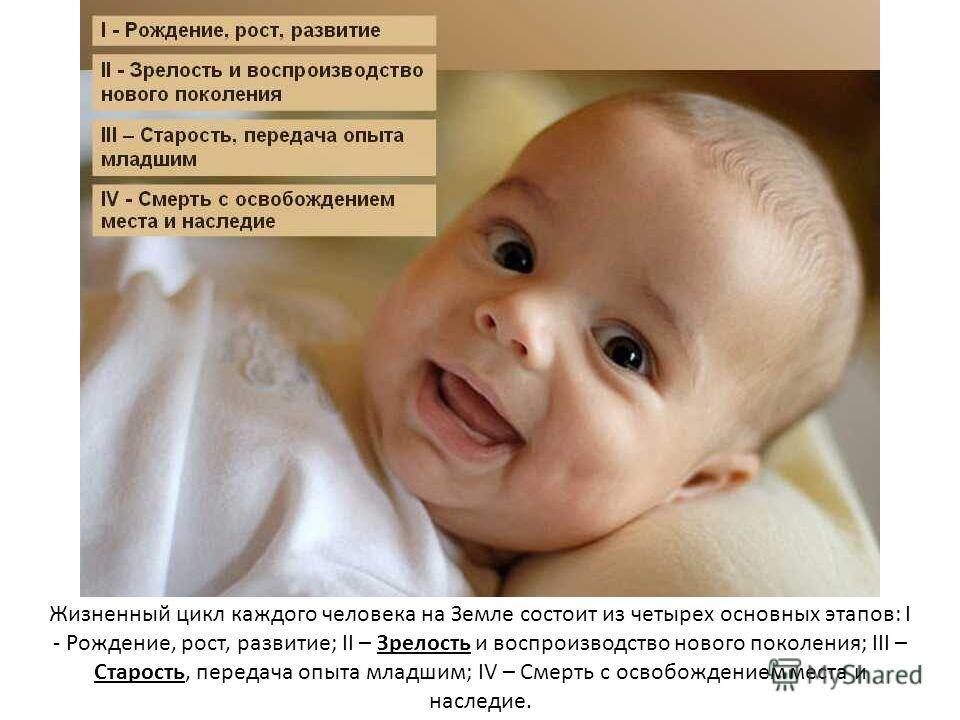Жизненный цикл каждого человека на Земле состоит из четырех основных этапов: I - Рождение, рост, развитие; II – Зрелость и воспроизводство нового поколения; III – Старость, передача опыта младшим; IV – Смерть с освобождением места и наследие.