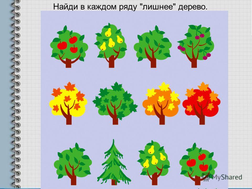 Найди в каждом ряду лишнее дерево.