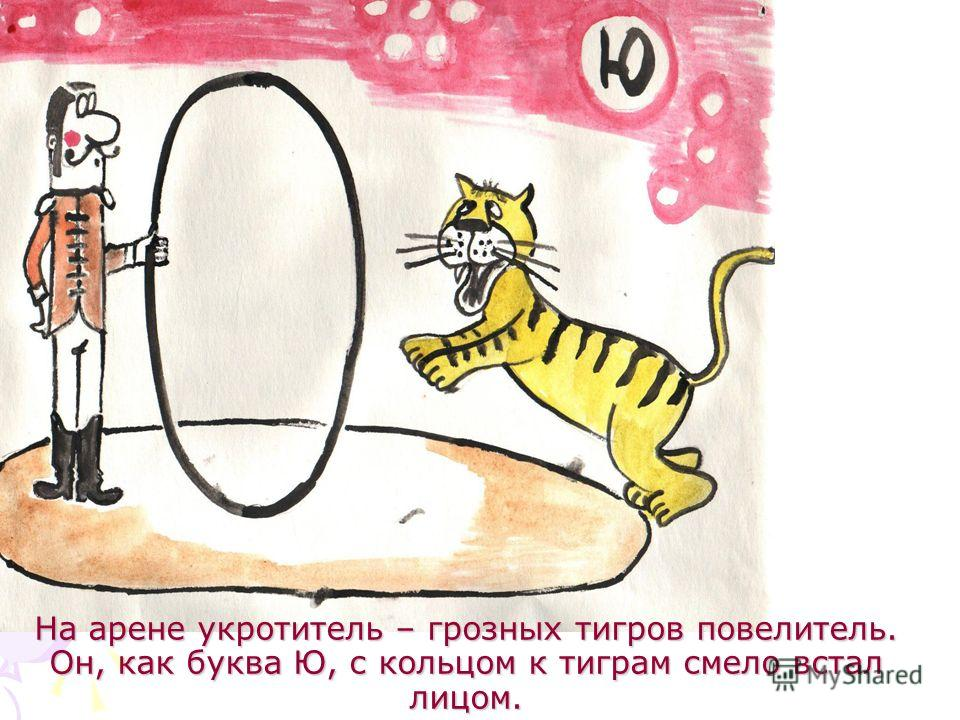 На арене укротитель – грозных тигров повелитель. Он, как буква Ю, с кольцом к тиграм смело встал лицом.