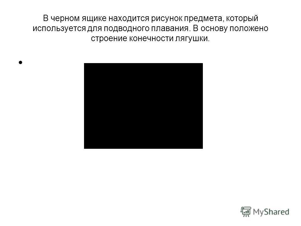 В черном ящике находится рисунок предмета, который используется для подводного плавания. В основу положено строение конечности лягушки.