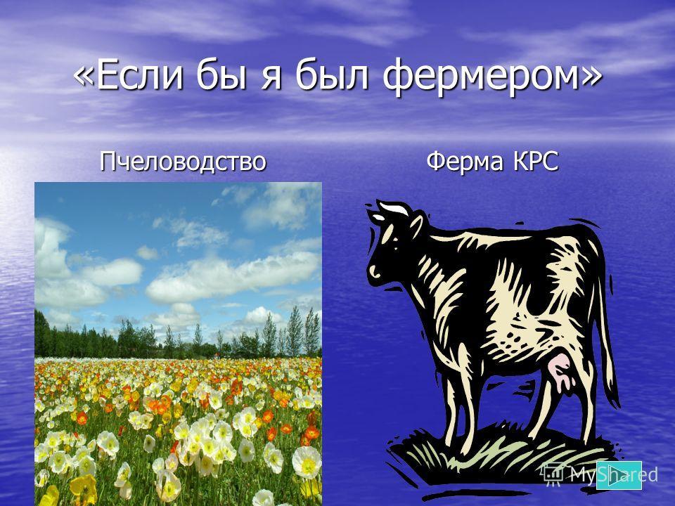 «Если бы я был фермером» Пчеловодство Ферма КРС