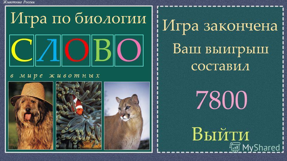 СЛОВОСЛОВО СЧЁТ Источник фото ВикипедиЯ Животные России 0 БТААРА ГОШПКР Откройте любую часть скрывающую изображение животного