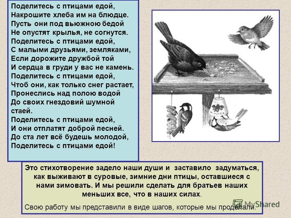 Поделитесь с птицами едой, Накрошите хлеба им на блюдце. Пусть они под вьюжною бедой Не опустят крылья, не согнутся. Поделитесь с птицами едой, С малыми друзьями, земляками, Если дорожите дружбой той И сердца в груди у вас не камень. Поделитесь с пти