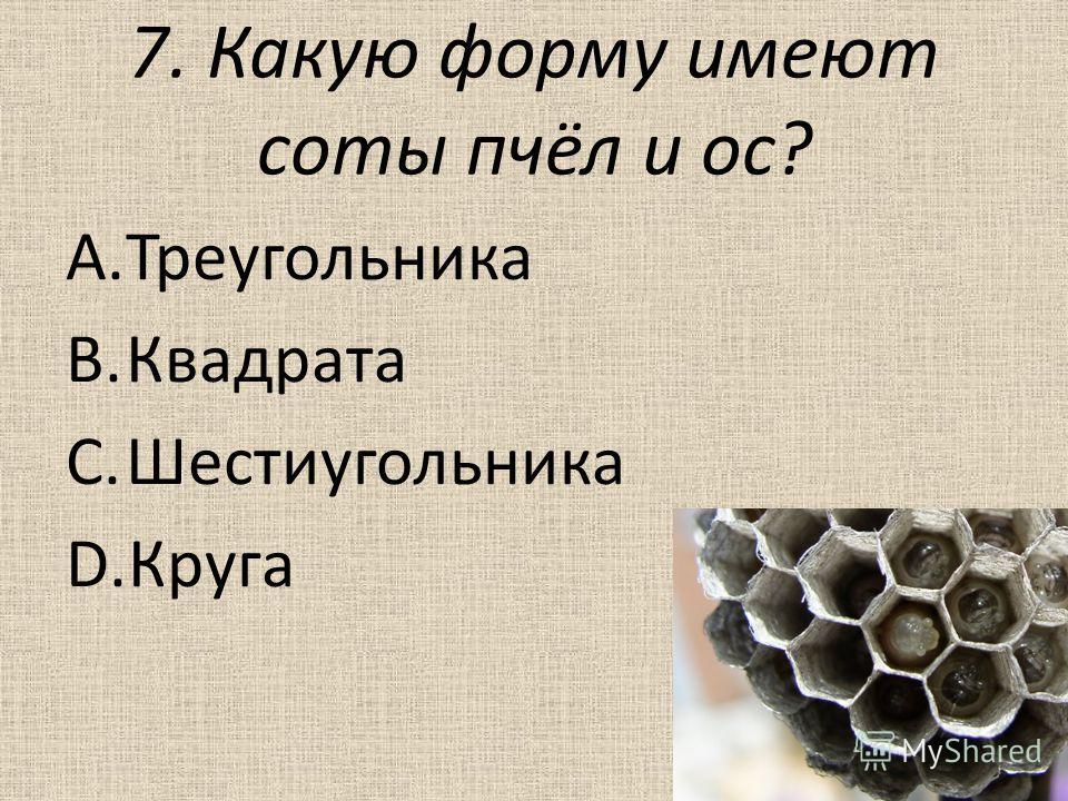 7. Какую форму имеют соты пчёл и ос? A.Треугольника B.Квадрата C.Шестиугольника D.Круга
