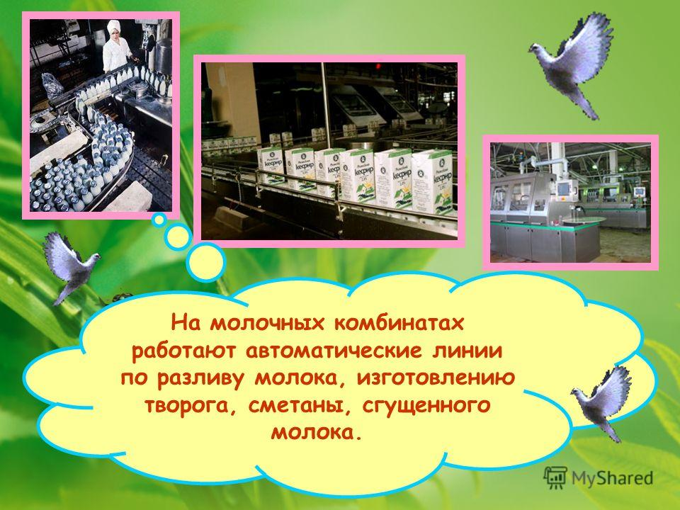 На молочных комбинатах работают автоматические линии по разливу молока, изготовлению творога, сметаны, сгущенного молока.