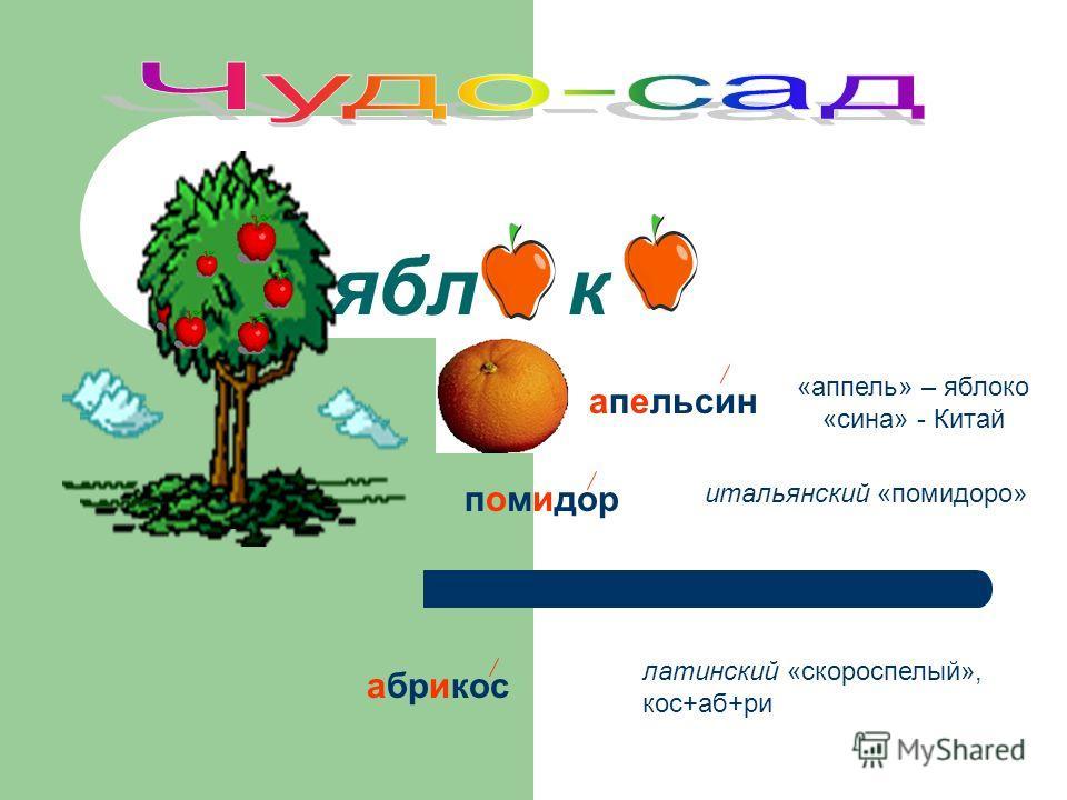 ябл к «аппель» – яблоко «сина» - Китай апельсин помидор итальянский «помидоро» абрикос латинский «скороспелый», кос+аб+ри