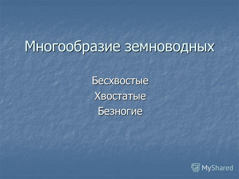Многообразие земноводных Бесхвостые ХвостатыеБезногие