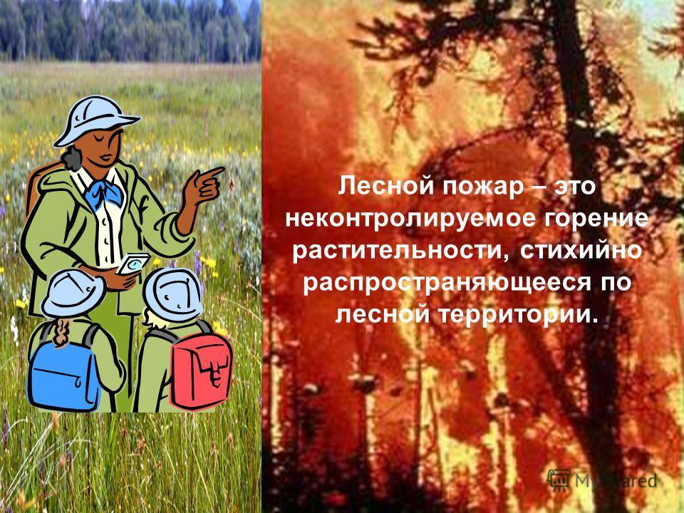 Лесной пожар – это неконтролируемое горение растительности, стихийно распространяющееся по лесной территории.
