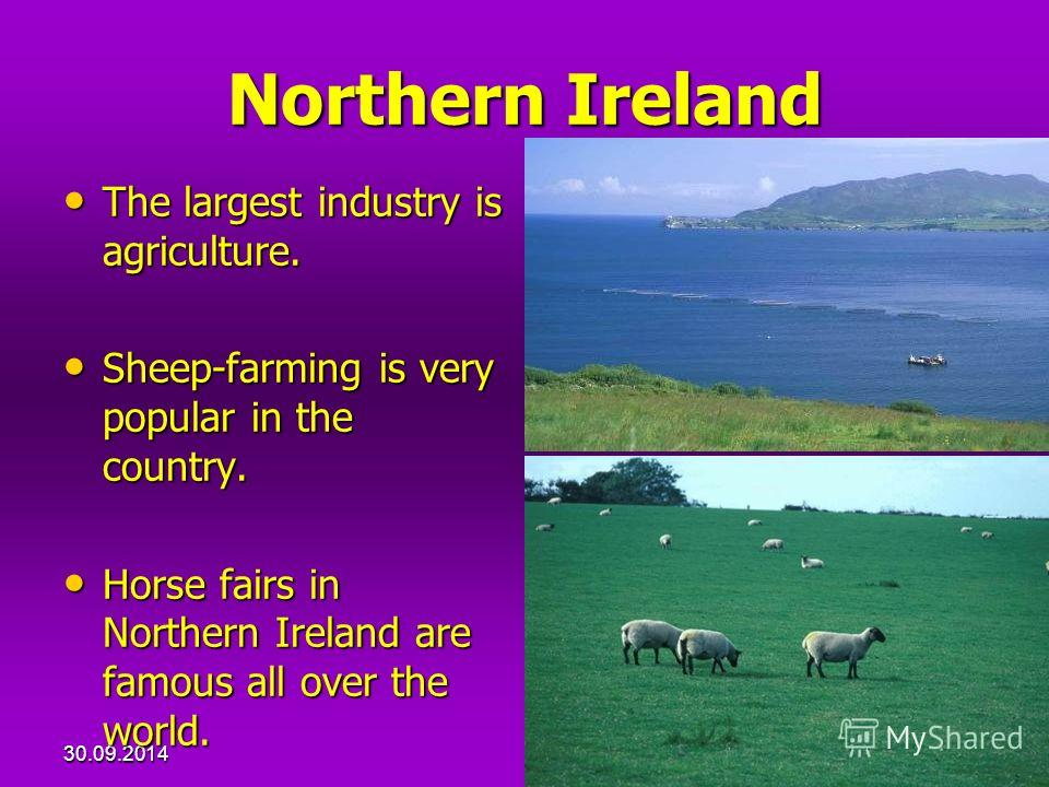 30.09.201418 Northern Ireland The largest industry is agriculture. The largest industry is agriculture. Sheep-farming is very popular in the country. Sheep-farming is very popular in the country. Horse fairs in Northern Ireland are famous all over th