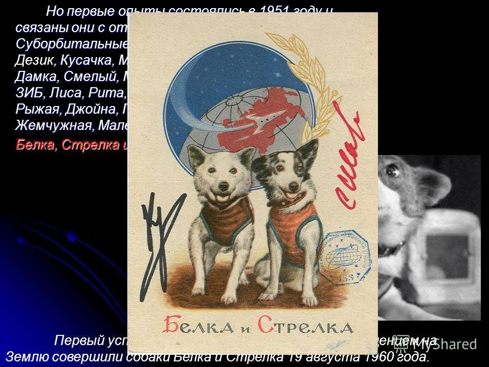 Но первые опыты состоялись в 1951 году и связаны они с отправкой в космос собак. Суборбитальные полеты совершали собаки, Кусачка, Модница, Козявка, Непутёвый, Чижик, Дамка, Смелый, Малышка, Снежинка, Мишка, Рыжик, ЗИБ, Лиса, Рита, Бульба, Кнопка, Мин