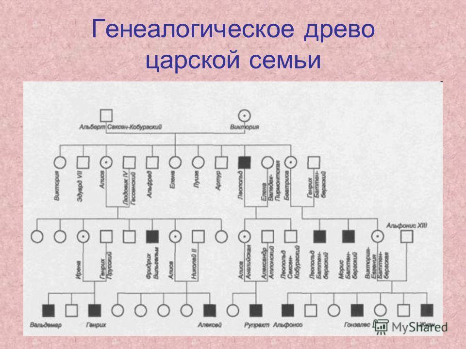 Генеалогическое древо царской семьи
