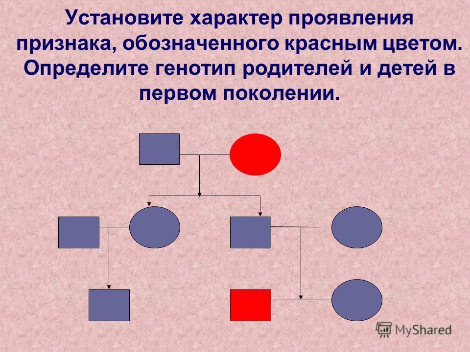 Установите характер проявления признака, обозначенного красным цветом. Определите генотип родителей и детей в первом поколении.