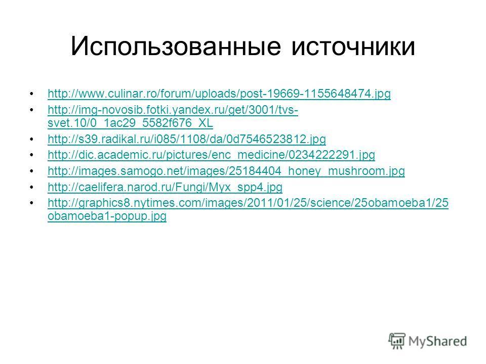Использованные источники http://www.culinar.ro/forum/uploads/post-19669-1155648474. jpg http://img-novosib.fotki.yandex.ru/get/3001/tvs- svet.10/0_1ac29_5582f676_XLhttp://img-novosib.fotki.yandex.ru/get/3001/tvs- svet.10/0_1ac29_5582f676_XL http://s3