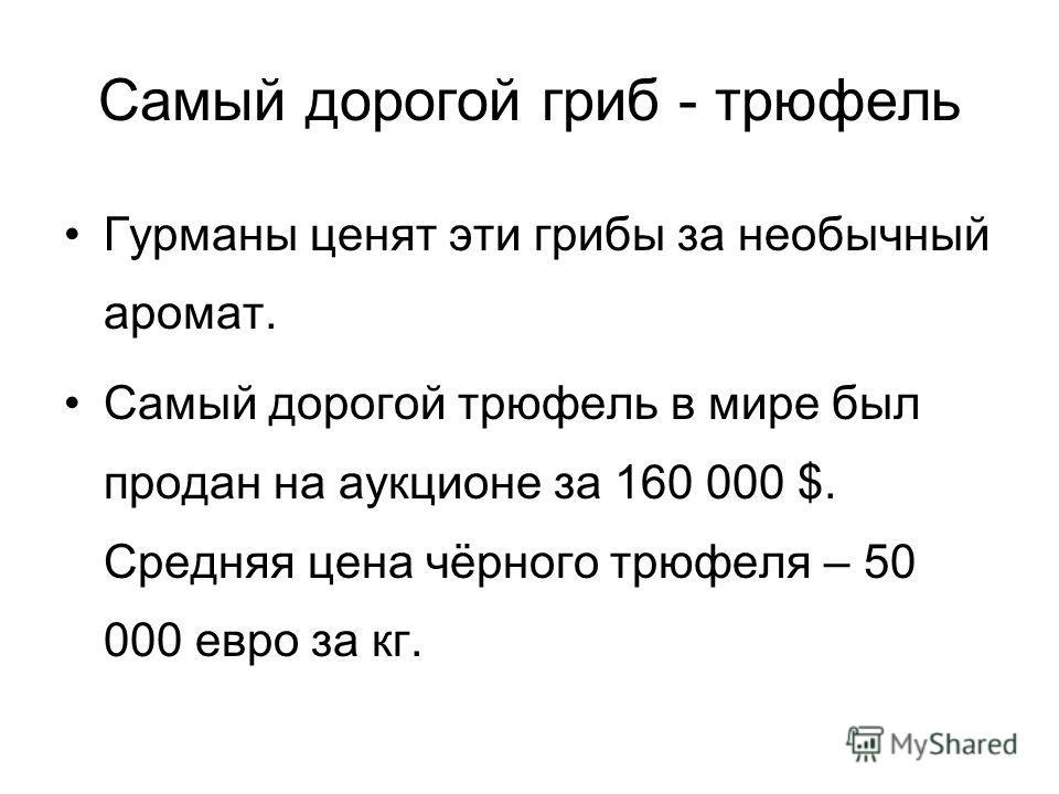 Самый дорогой гриб - трюфель Гурманы ценят эти грибы за необычный аромат. Самый дорогой трюфель в мире был продан на аукционе за 160 000 $. Средняя цена чёрного трюфеля – 50 000 евро за кг.