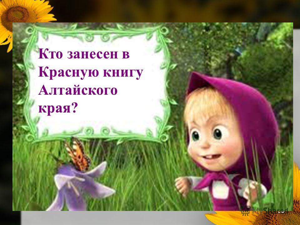 39 Кто занесен в Красную книгу Алтайского края?